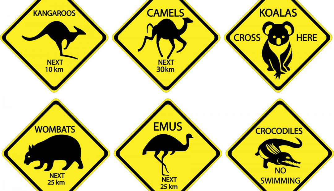 The Craziest Road Signs From Around The World