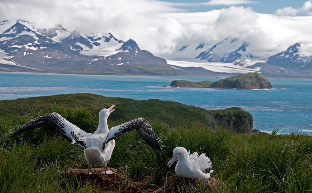 5 of the Most Isolated Islands on Earth